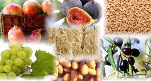 שבעת המינים – בריאות בארץ ישראל!