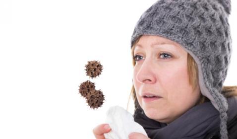 חיזוק מערכת החיסון וטיפול טבעי במחלות חורף