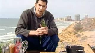 מתכון לדג סלמון ברוטב עגבניות - משה שגב