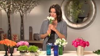 איריס רוזין עיצוב פלוס - סטייל לוואזות ערוץ בית+