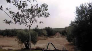 צימרים בדרום בכרם הזיתים במושב תלמי ביל