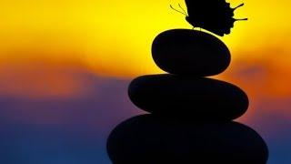 3 Hour Zen Meditation Music: Soothing Music, Healing Music, Calming Music, Relaxation Music ☯2445