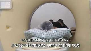 גילוי מוקדם של מחלות הסרטן בבית החולים הדסה