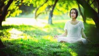 3 Hour Meditation Music Relax Mind Body: Healing Music, Relaxing Music, Relaxation Music ☯2581