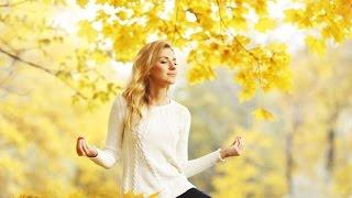 3 HOUR Healing Meditation Music: Relax Mind Body, Relaxing Music, Calming Music, Relaxation ☯083A